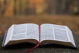 성서.jpg